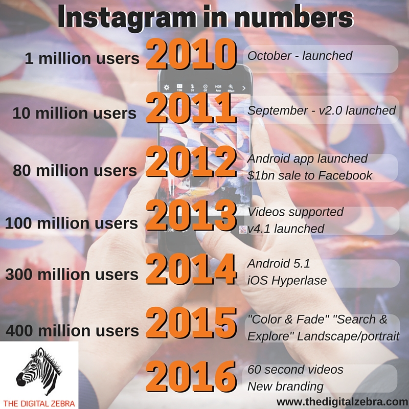 The Digital Zebra Instagram inforgraphic